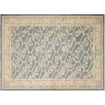 Leann Hand-Knotted Light Blue/Beige Wool Area Rug