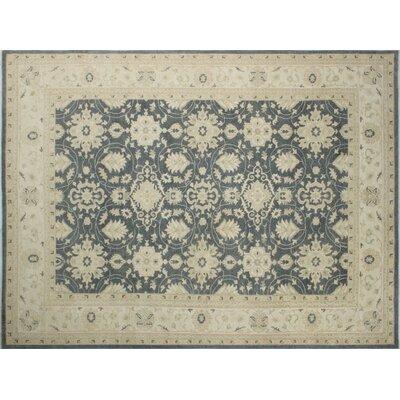 Leann Hand-Knotted Oriental Rectangle Gray Indoor Area Rug