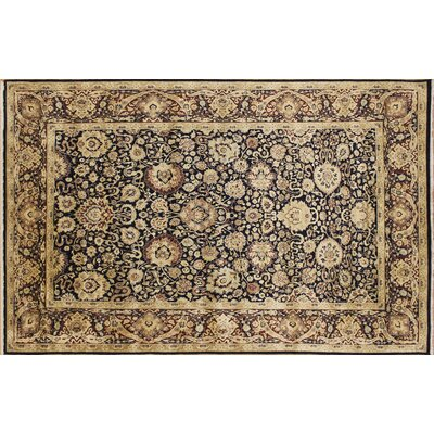 Versailles Hestia Hand Knotted Wool Blue/Beige Area Rug Rug Size: Rectangle 6 x 9