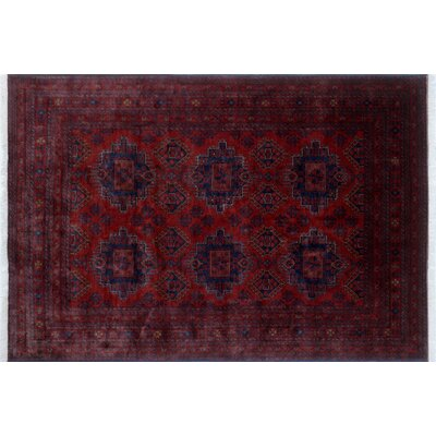 Alban Tribal Hand-Knotted Rectangle Red Border Area Rug