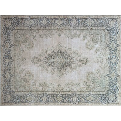 Parra Distressed Hand-Knotted Beige Area Rug