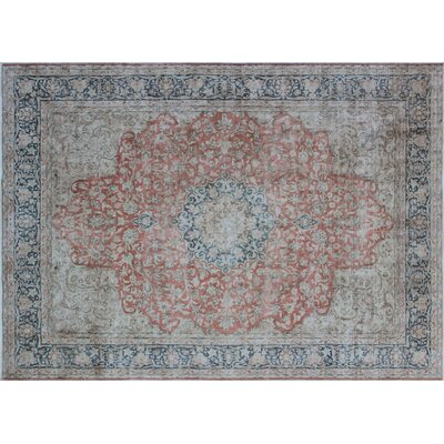 One-of-a-Kind Houten Fine Distressed Stas Hand-Knotted Rust Area Rug