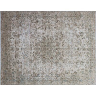 Ashlee Fine Distressed Hand-Knotted Beige Area Rug