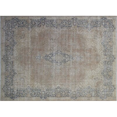 Tania Distressed Hand-Knotted Brown Area Rug