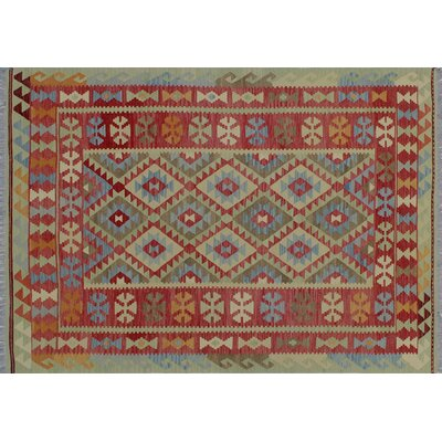 Aulay Kilim Hand-Woven Rectangle Green Area Rug