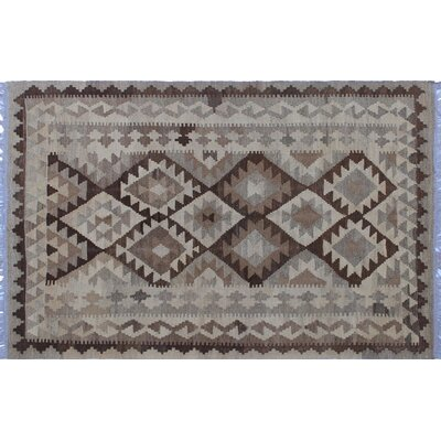 One-of-a-Kind Vallejo Kilim Southwestern Hand-Woven Beige Indoor Area Rug