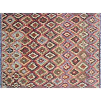 Cortez Kilim Hand-Woven Rectangle Red Indoor Area Rug