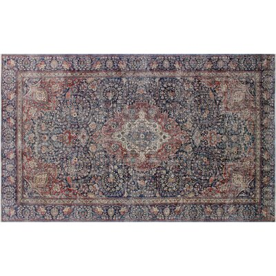 Haider Vintage Distressed Hand-Knotted Blue Area Rug
