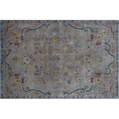 Hanneli Overdyed Distressed Hand-Knotted Gray Aera Rug