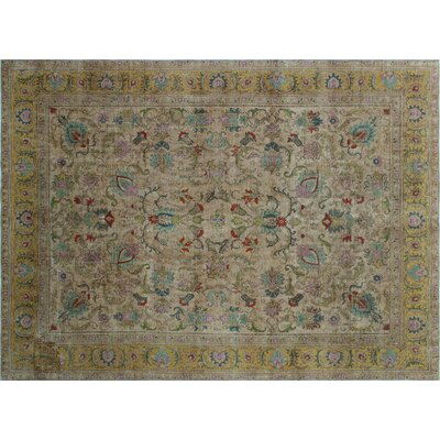 Isabeli Overdyed Distressed Hand-Knotted Lite Brown Area Rug