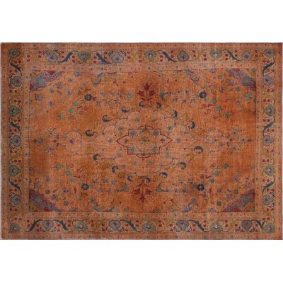 Jil Vintage Distressed Hand-Knotted Orange Area Rug