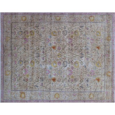 Cathryn Vintage Distressed Hand-Knotted Beige Area Rug