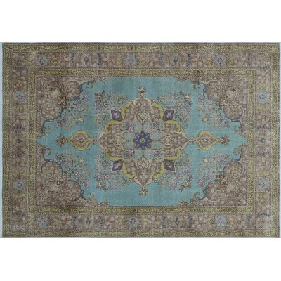 One-of-a-Kind Binx Hand-Knotted Blue Area Rug