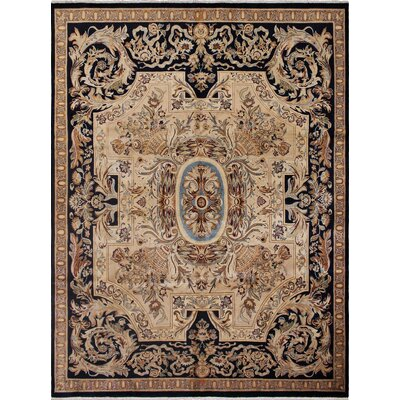 Saranac Hand Knotted Wool Black/Beige Area Rug Rug Size: Rectangle 8 x 101