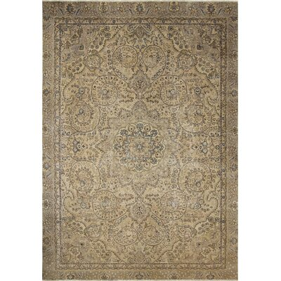One-of-a-Kind Frank Distressed Hand Knotted Wool Beige Area Rug