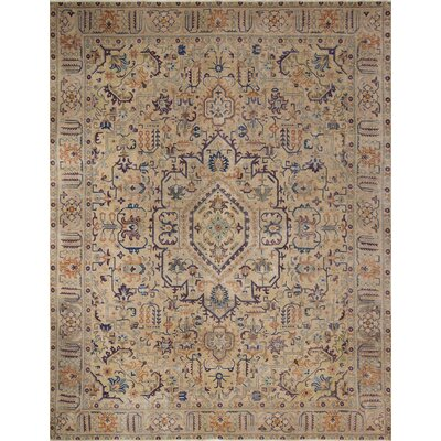 Brucedale Distressed Hand-Knotted Wool Brown Rug