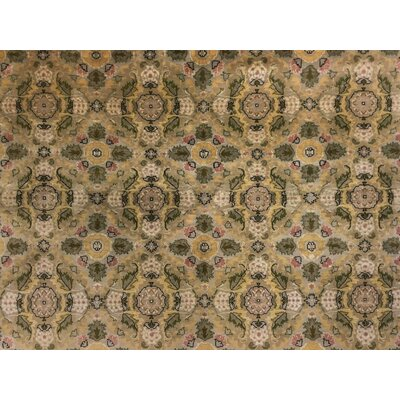 Cleasby Traditional Hand Knotted Rectangle Wool Beige/Green Area Rug