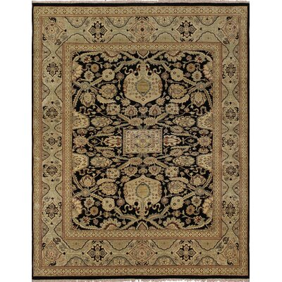 Clerkin Hand Knotted Wool Black/Beige Area Rug