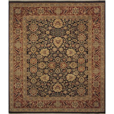 Cleasby Hand Knotted Rectangle Wool Navy/Beige Area Rug