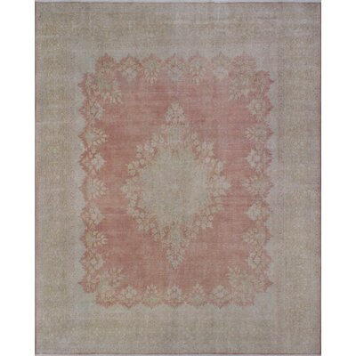 Agata Vintage Distressed Hand Knotted Wool Rust Area Rug