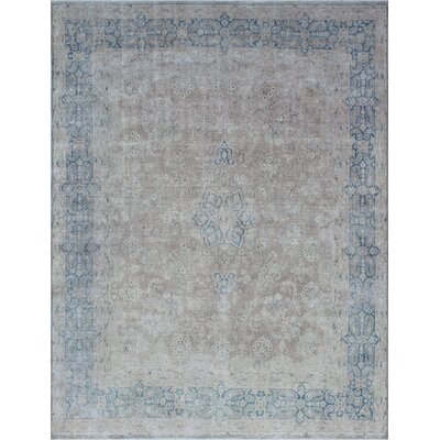 Agueda Vintage Distressed Hand Knotted Wool Beige Area Rug