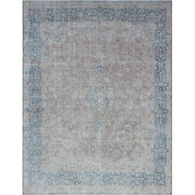 Agueda Vintage Distressed Hand Knotted Wool Beige Area Rug