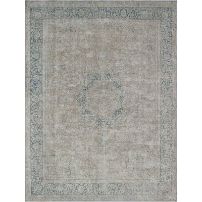 Aguiar Vintage Distressed Hand Knotted Wool Beige Area Rug