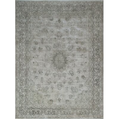 Agustine Vintage Distressed Hand Knotted Wool Beige Area Rug
