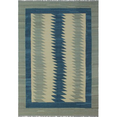 Fargnoli Kilim Hand Woven Wool Gray Area Rug