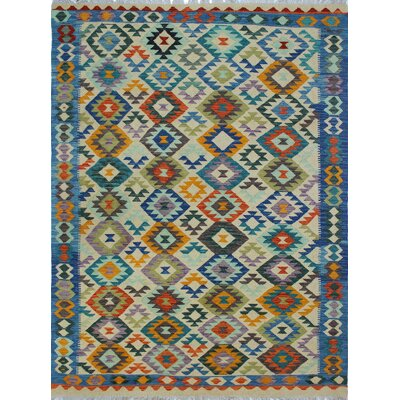 Rucker Traditional Kilim Hand Woven Wool Rectangle Beige Fringe Area Rug