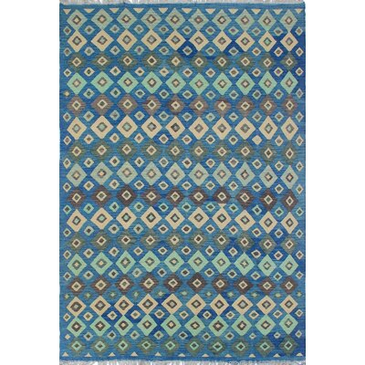Vallejo Traditional Kilim Hand Woven Wool Rectangle Blue Fringe Area Rug