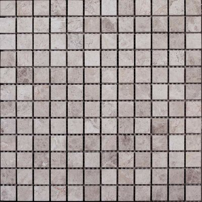 Polished 1 x 1 Marble Mosaic Tile in Silver Shadow