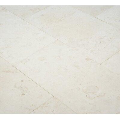 6 x 12 Limestone Field Tile in Corinthian Fossil