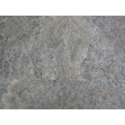 6 x 12 Travertine Field Tile in Gray/Silver