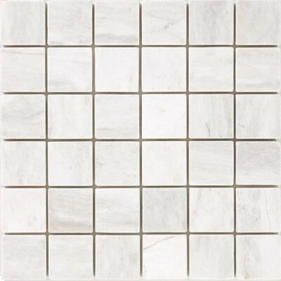 Honed 2 x 2 Mosaic Tile in Bianco Dolomite