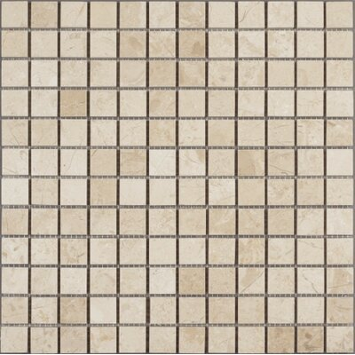 Polished 1 x 1 Marble Mosaic Tile in Crema Nouva