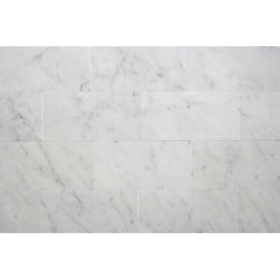 3 x 6 Carrara Marble Field Tile in Honed Bianco