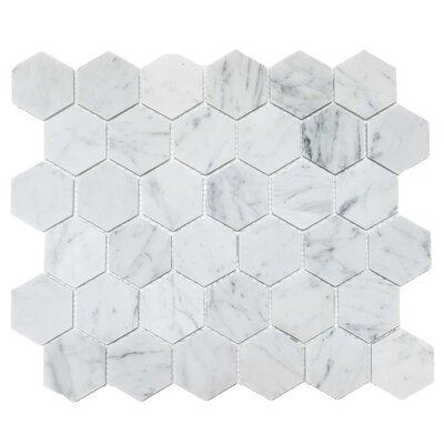 Honeycomb Hex Honed 2 x 2 Mosaic Tile in Bianco Carrara