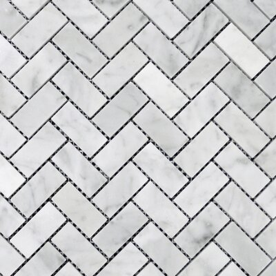 Herringbone Polished 1 x 2 Mosaic Tile in Bianco Venantino