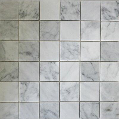Honed 2 x 2 Mosaic Tile in Bianco Carrara