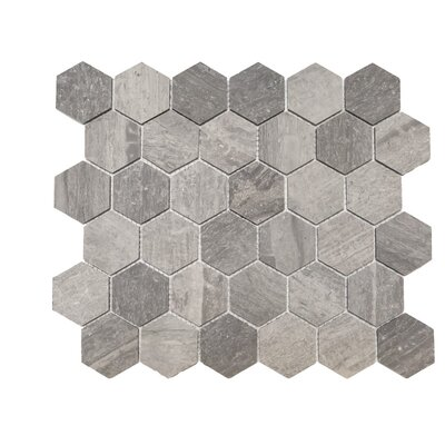Honeycomb Honed 2 x 2 Marble Mosaic Tile in Blue Savoy