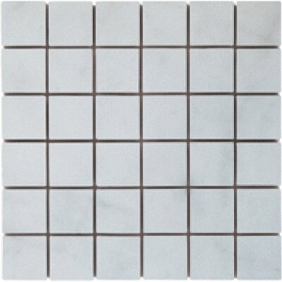 Polished 2 x 2 Marble Mosaic Tile in Bianco Venantino