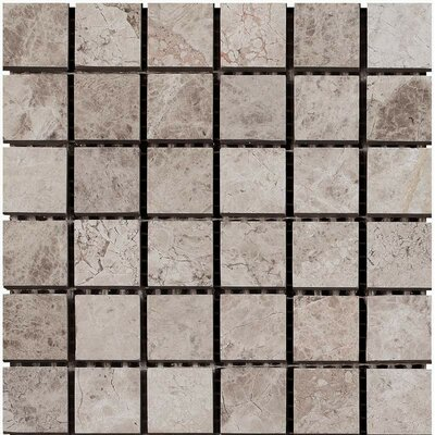 Polished 2 x 2 Marble Mosaic Tile in Silver Shadow