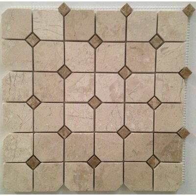 Hex Polished 2 x 2 Mosaic Tile in Crema Nouva