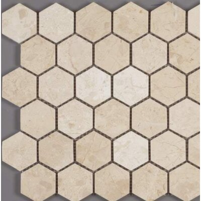 Honeycomb Hex Polished 2 x 2 Mosaic Tile in Crema Nouva