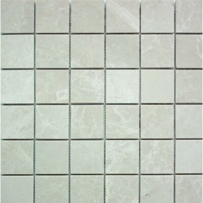 Polished 2 x 2 Mosaic Tile in Botticino