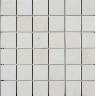 Honed 2 x 2 Limestone Mosaic Tile in Corinthian Fossil