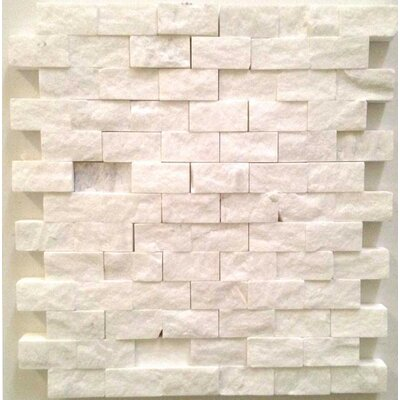 1 x 2 Bianco Dolomite Mosaic Tile in White