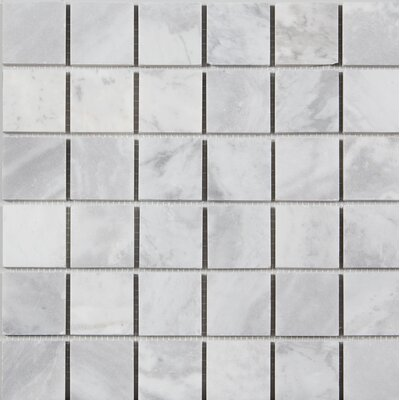 Honed 2 x 2 Mosaic Tile in Argento Dolomite