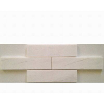 Honed 2 x 8 Marble Mosaic Tile in Bianco Dolomite